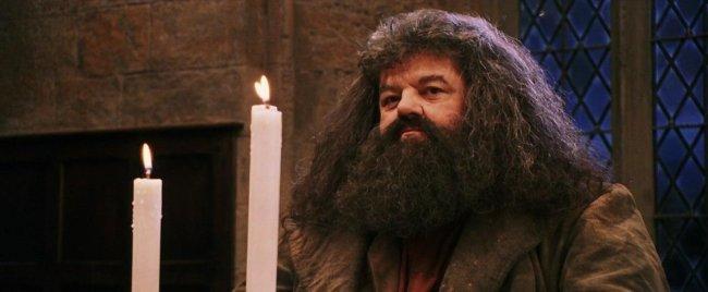 Эдди Редмэйн хочет вернуть Хагрида в «Фантастических тварях»